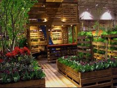 Image detail for -Use Old Pallets to create a Garden Space