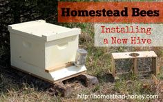Installing a New Hive