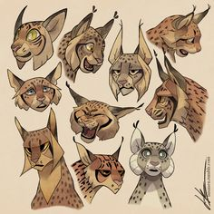 Lynx faces cats in 2019 art sketches, drawings, art Character Design Cartoon, Cat Character, Character Design References, Animal Sketches, Animal Drawings, Art Sketches, Drawing Animals, Disney Sketches, Big Cats Art