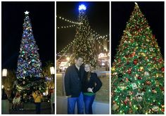 Read all about the awesomeness that goes on at #Disneyland during the #Holidays #DisneylandHolidayMagic #Trees of #Disney - #CalforniaAdventure #DowntownDisney, and Disneyland