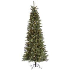 7.5' Vickerman A114476 Blue Albany Spruce - Blue, Green Christmas Tree