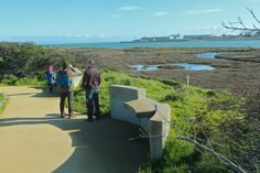 Easy Hikes in SF: Herons Head Park  Heron's Head Park has 24 acres of salt marsh and bayside beach favored by over 100 bird species. Tranquil trails here meander among rehabilitated and protected marshland that's essential for bird nesting, resting, and feeding.