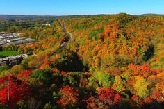 There is no better way to view fall colours near Toronto than from the elevated perch of a lookout. Whether it's a natural phenomenon or an observa. Lookout Tower, Toronto Travel, Natural Playground, Natural Phenomena, Most Visited, Weekend Getaways, The Great Outdoors, Niagara Falls