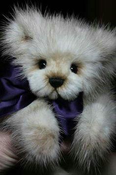 Teds!
