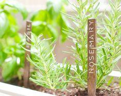 DIY Herb Garden Signs