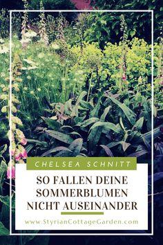 Mit dieser Schnitt Technik die Standhaftigkeit der Pflanzen erhöhen und die Blüte verlängern Chelsea, Plants, Movie Posters, Summer Flowers, Shade Perennials, Film Poster, Plant, Billboard