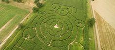 Luftaufnahmen von Maislabyrinth