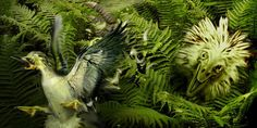 A Troodon, one of the small carnivores characteristic of Alberta dinosaurs, tries to catch a toothed bird (Jan Sovak)