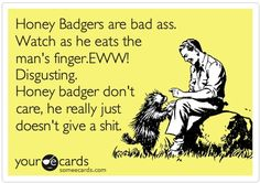 Who isn't a lil bit honeybadger...all nasty ass and not giving a shit?HA! @Jena Whitley-you know?