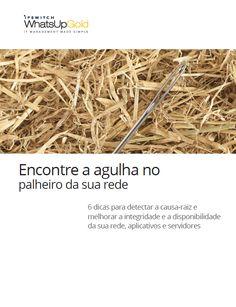 Encontre a agulha no palheiro da sua rede