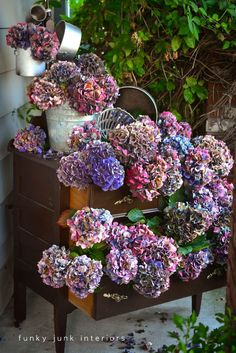 A vibrant dried hydrangea dresser via Funky Junk Interiors Love this SO MUCH! The overflowing, lucious look of the hydrangias is so awesome! Hortensia Hydrangea, Hydrangea Bush, Hydrangea Wreath, Funky Junk Interiors, Cut Flowers, Dried Flowers, Plantation, Home Design, Green Life