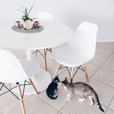 Dining table | Eames chairs & IKEA DOCKSTA table | Minimal dining room