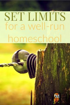 Have you noticed the plethora of homeschool curriculum and activities these days? So how do you set limits for a well-run homeschool? Learn how now!