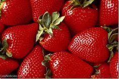 Alimentos rojos que te ayudarán a quemar grasa - http://www.leanoticias.com/2014/01/14/alimentos-rojos-que-te-ayudaran-quemar-grasa/