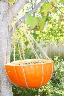 Pumpkin bird feeder.. I'm making one right now!