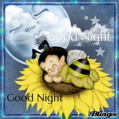 Baby Bee Good Night Gif good night good night gif good night pictures good night quotes and sayings good night sayings Evening Greetings, Good Night Greetings, Good Night Messages, Good Night Wishes, Good Night Sweet Dreams, Good Night Image, Good Night Quotes, Good Morning Good Night, Good Night Sleep