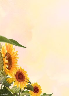 Download premium illustration of Hand drawn sunflower on a yellow background about sunflower, background sunflower, sunflower illustration, Sunflower Sketches, Sunflower Illustration, Sunflower Drawing, Watercolor Sunflower, Background Yellow, Sunflowers Background, Background Banner, Watercolor Border, Watercolor Wallpaper
