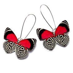Resultado de imagem para 88 butterfly open
