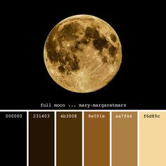 It was a full moon on the night you were born. Black Color Palette, Gold Color Scheme, Gold Palette, Colour Pallette, Colour Schemes, Color Combinations Home, Color Combos, Mixing Paint Colors, Color Mixing