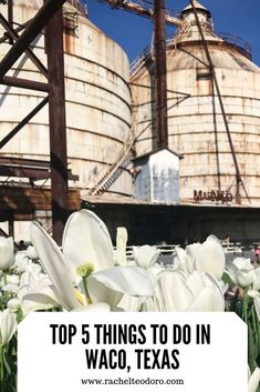 Top 5 Things to do in Waco, Texas #fixerupper #wacotexas #visitwaco #visittexas #magnolia #magnoliamarket #familytravel #travel
