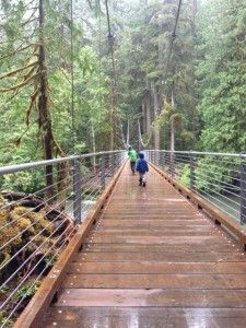 Explores Olympic National Park's Staircase Hike – Rain Or Shine