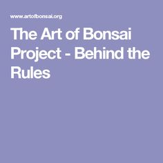 The Art of Bonsai Project - Behind the Rules