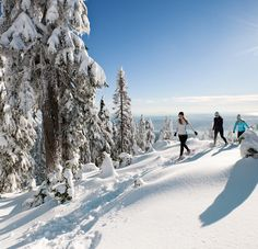Grouse Mountain's multiple Snowshoe Clinics will teach you all about the fastest growing winter activity
