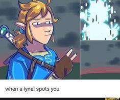 Legend of Zelda Breath of the Wild The Legend Of Zelda, Legend Of Zelda Memes, Legend Of Zelda Breath, Image Zelda, Video Game Memes, Video Games, Botw Zelda, Hyrule Warriors, Link Zelda