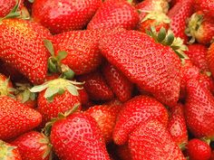 How to Grow Strawberries in 8 Steps + look around the site, lots of other great fruit growing tips!