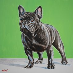 "viana's champion frenchie 30x30"" oil on canvas by drago milic"