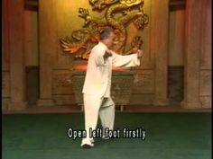 Yang Style Taijiquan 103 form part 2 by grandmaster Yang Zhenduo and master Yang Jun