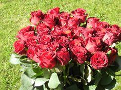 Úžasná kytica červených ruží