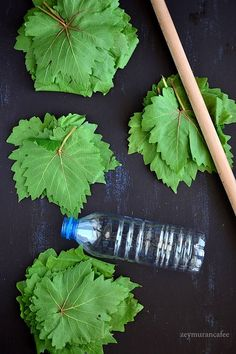 how to store leaf in pet bottle Marinated Olives, Thai Dessert, Cookery Books, Iranian Food, Pet Bottle, Unique Animals, Turkish Recipes, Winter Food, Dog Supplies