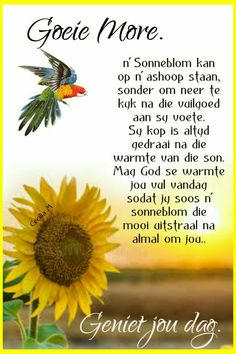 Good Morning Messages, Good Morning Wishes, Good Morning Quotes, Good Morning Rainy Day, Good Morning Flowers, Rainy Day Quotes, Lekker Dag, Afrikaanse Quotes, Goeie Nag
