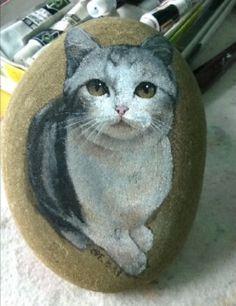 Cat on stone