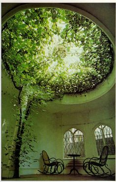 incorporated plants and nature - aerial greenery in a glass dome