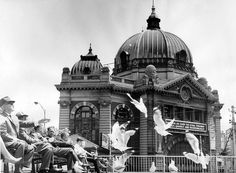 Flinders Street Station where people sit and feed the seagulls in the Princes Gate plaza. 1967.(now demolished, but Flinders St. Station still going strong) (This is now the site of Federatopn Square)