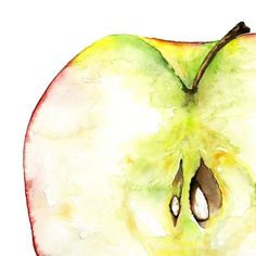 Image result for fruit watercolor