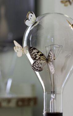 How to make vellum moths and butterflies  (Urban Comfort)
