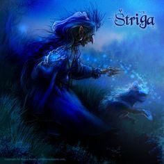 Shtriga Cg Artwork, Fantasy Artwork, Art Portfolio, Mythology, Digital Art, Photoshop, Wizards, Witches, Painting