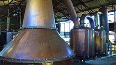 A look at Hampden Estate Distillery in Jamaica.