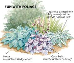 With good-looking foliage that doesn't go down with the flowers, coral bells just may be the perfect companion plant.