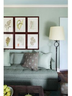 Home Decor Photos: Cozy Chic Family Room from The Nest