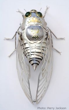 I'm not sure if it's jewelry or sculpture, but it's beautiful elizabeth_goluch_cicada. Arte Steampunk, Gothic Steampunk, Animal Sculptures, Sculpture Art, Arte Robot, Bug Art, Insect Jewelry, Insect Art, Artist Gallery