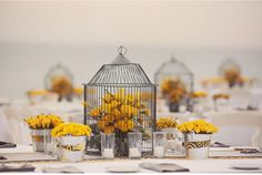 Birdcages and golden yellow...yeah!