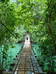 Footbridge near Drake's Bay on the Osa Peninsula - Costa Rica.