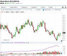 WASDE Report: il Wheat prende il volo! - Materie Prime - Commoditiestrading