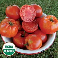 Tomato, Italian Heirloom  This outstanding heirloom tomato from Italy is one of the most productive varieties we have grown at Heritage Farm.  The exact date of the domestication of tomatoes is unknown, but by 500 BCE they were already being grown in southern Mexico.