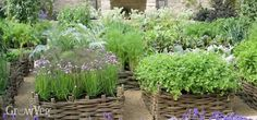 If you're looking for ideas to fit more herbs into your garden, you've come to the right place! In this short video and article we'll share some design ideas to help you fit more herbs into your garden whatever the style, size or shape. Unique Garden, Herb Garden Design, Garden Design Plans, Vegetable Garden Design, Types Of Herbs, Corner Garden, Growing Herbs, Medicinal Herbs, Kraut