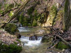 Vadregényes sziklafalak közé bújva. A Pilis hegység és egyik ékessége, a Dera-szurdok a Duna-Ipoly Nemzeti Park területén fekszik. A fokozottan védett területnek számító részt kizárólag a turistaútvonalakat használva járhatjuk be. Budapest Hungary, Slovenia, Waterfall, Nature, Travel, Outdoor, Google, Photos, Diy